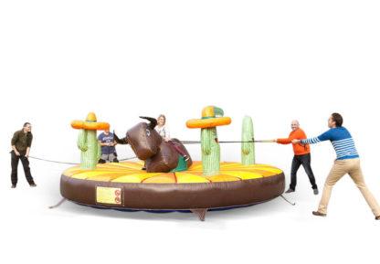 trek-rodeo jb-amusement